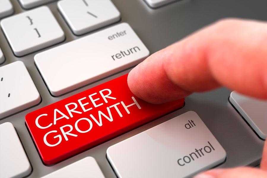 seeking_Tax Professional
